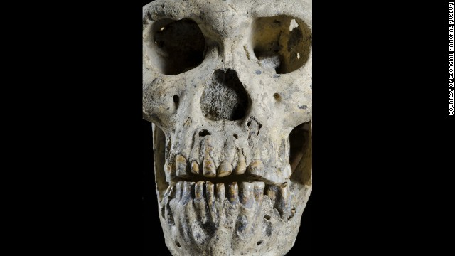 Skull of ancient hominoid; courtesy of CNN International