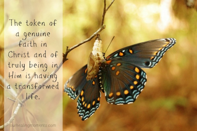 The Butterfly: One of my favorite images of what authentic Christianity is