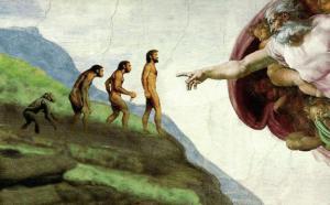 evolution religion